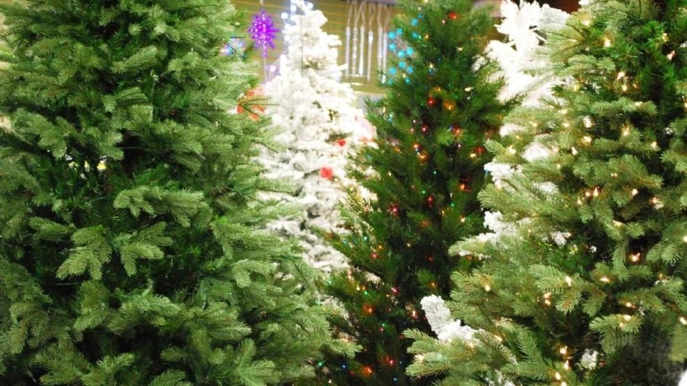 dmv christmas trees